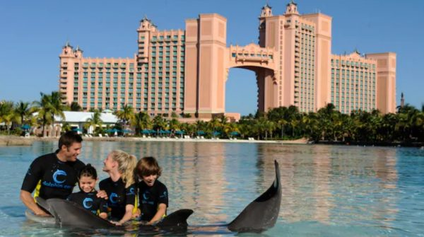 Atlantis Dolphin Cay Dip 'N Discover Interaction and Discover Atlantis