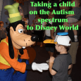 autismspectrumsquare 115x115 - Taking a child on the autism spectrum to Disney World