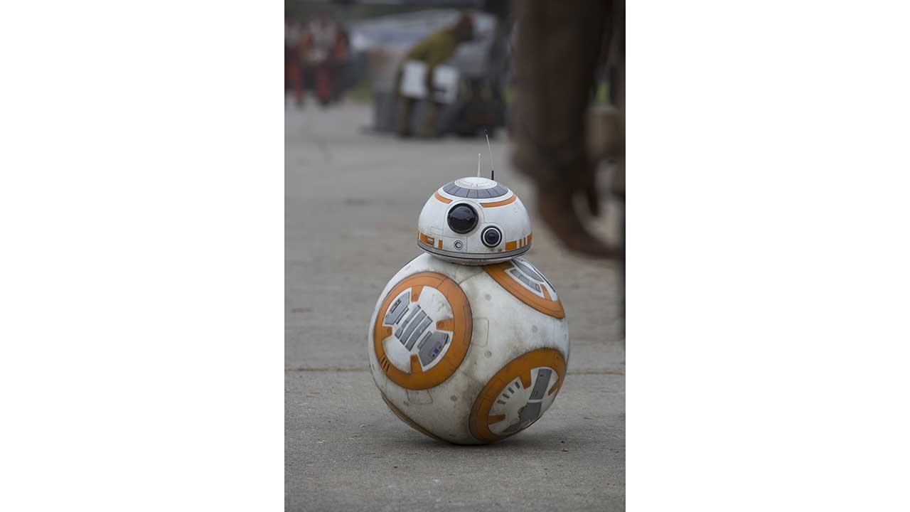 BB-8 Astromech on Duty (character meet)