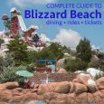 blizzardbeach 115x115 - Complete guide to Blizzard Beach (including rides, dining, and tickets)
