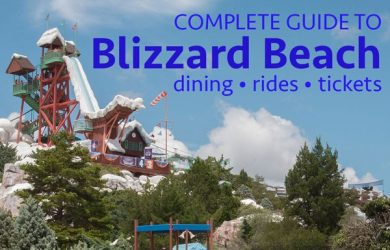 blizzardbeach 390x250 - Complete guide to Blizzard Beach (including rides, dining, and tickets)