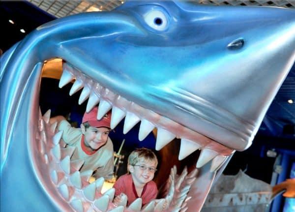bruce's shark world at epcot