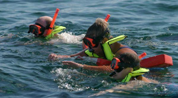 Caribbean Queen Snorkel Tour