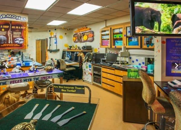 Conservation Station at Animal Kingdom