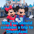 considerdisneyland 115x115 - You should consider a trip to Disneyland - PREP111