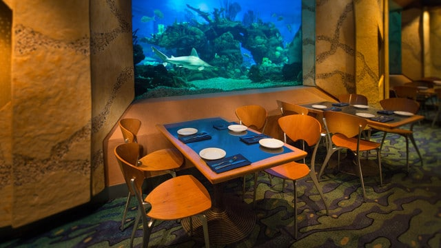 Epcot Dining - Coral Reef (lunch)