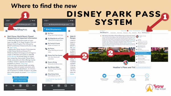 Where to Find Disney Park Pass