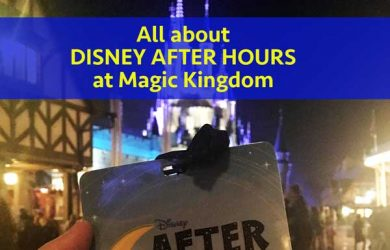 Disney After Hours badge