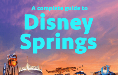 disneysprings1 390x250 - Complete guide to Disney Springs (formerly Downtown Disney)
