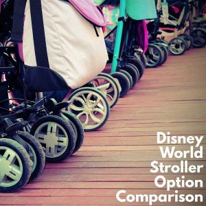 791f856b74baf2 Comparing the best Disney World stroller options (New rules start May 1)
