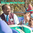 Overview of Disney World tours