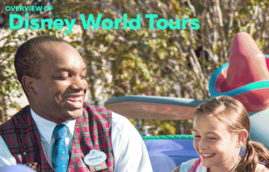 disneyworldtours 390x250 - All about Disney World tours (ages, costs, length)