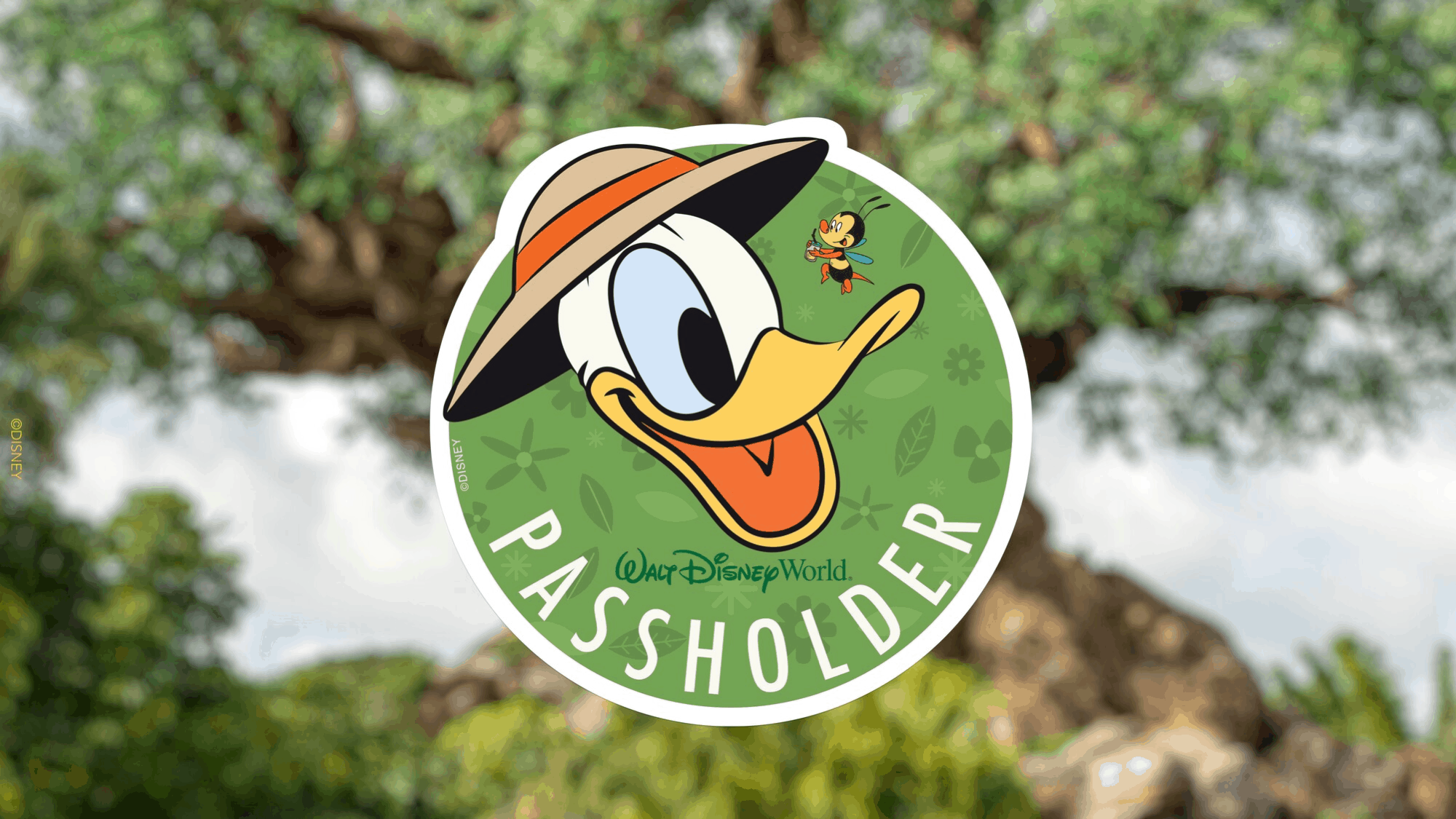 donald duck annual passholder magnet