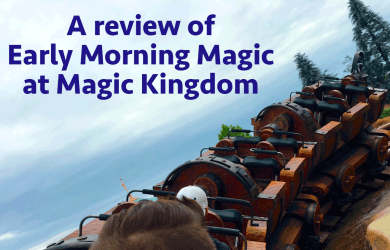earlymorningmagicreview 390x250 - A Review of Early Morning Magic – Fantasyland