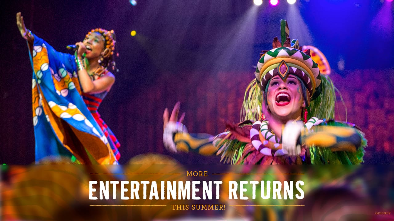 festival of the lion returns to animal kingdom in summer 2021