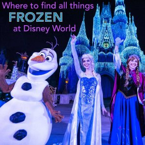 tips for seeing anna and elsa at disney world and olaf too