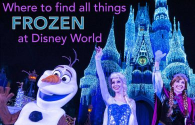 frozendisneyworld 390x250 - Tips for seeing Anna and Elsa at Disney World (and Olaf too!)