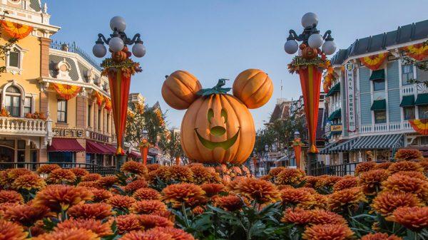 Giant Mickey Pumpkin at Disneyland