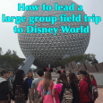 groupfieldtripsquare 115x115 - Taking a large group field trip to Disney World