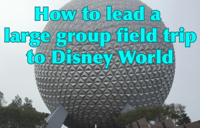 groupfieldtripsquare 390x250 - Taking a large group field trip to Disney World