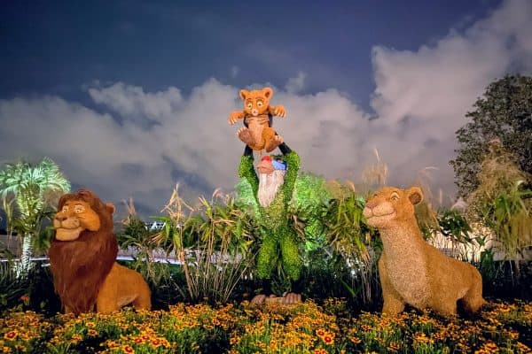 Epcot Flower and Garden lion king topiary