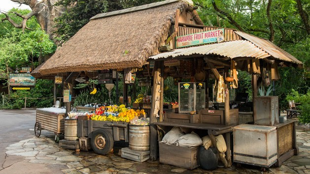 Animal Kingdom Dining - Harambe Fruit Market