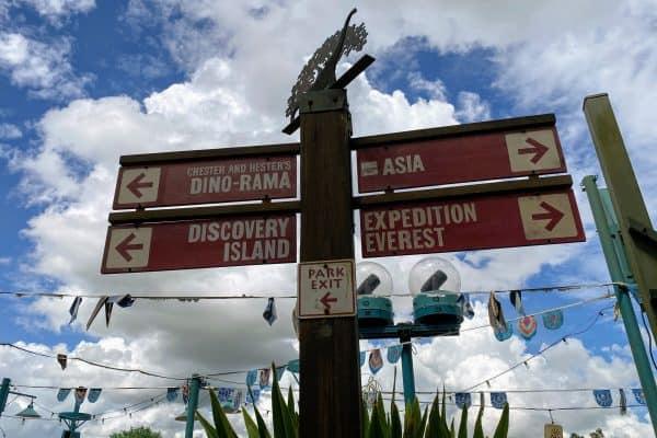 Animal Kingdom signs
