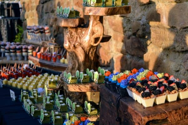 Rivers of Light Dessert Party food