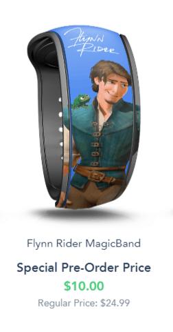 Premium MagicBand Disney World