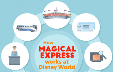 howmagicalexpressworkssquare 2 390x250 - How Magical Express works at Disney World