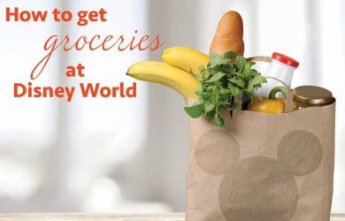 howtogetgroceries 390x250 - How to get groceries at Disney World
