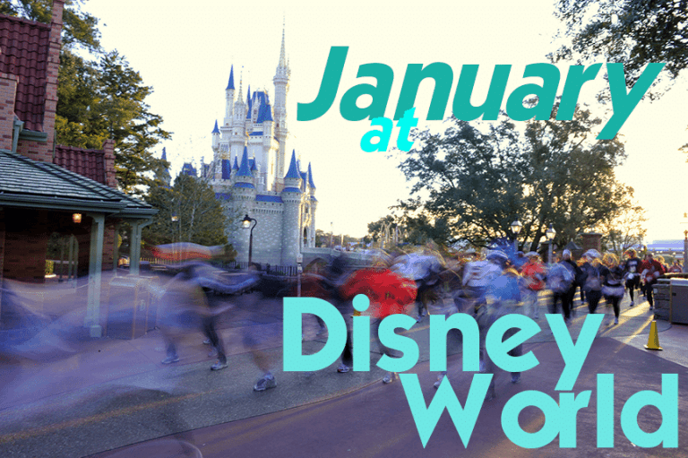 januaryheader1 768x511 - January 2018 at Disney World