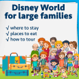 largefamiliessquare 115x115 - Doing Disney World with large families
