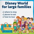largefamiliessquare 115x115 - Doing Disney World with large families