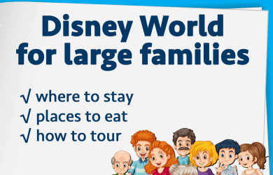 largefamiliessquare 390x250 - Doing Disney World with large families