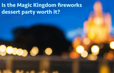 Magic Kingdom fireworks dessert party