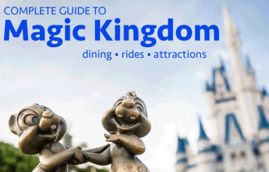 magickingdomguide 390x250 - Complete guide to Magic Kingdom