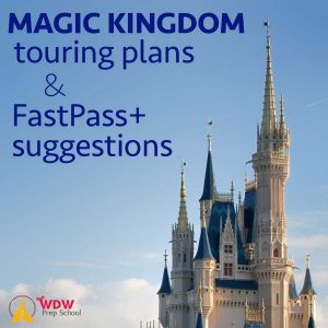 Magic Kingdom touring plans