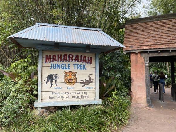 Maharahjah Jungle Trek at Animal Kingdom