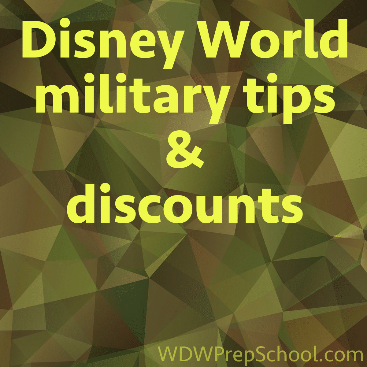 Military deals for disney world