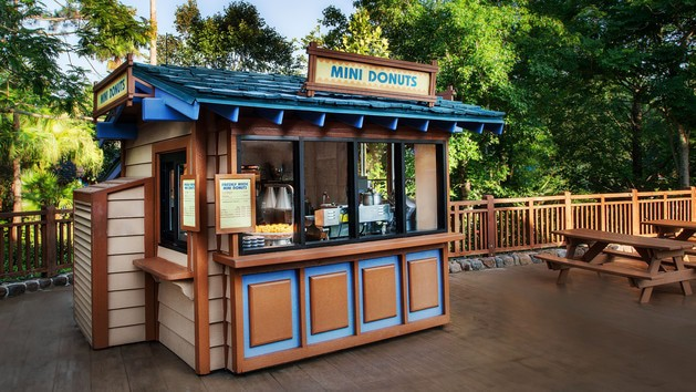 mini donuts 00 - Lottawatta Lodge (lunch)