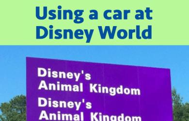 navigatebycar 390x250 - Using a car at Disney World
