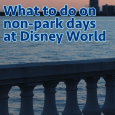 nonparkdaysquareimage 115x115 - Things to do on non-park days at Disney World - PREP072
