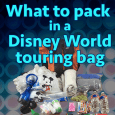 Disney World park touring bag square