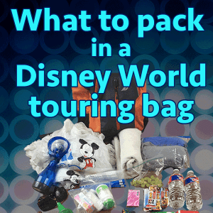 6e6b25d768c What to pack in your Disney World park bag (no minimalists here!)