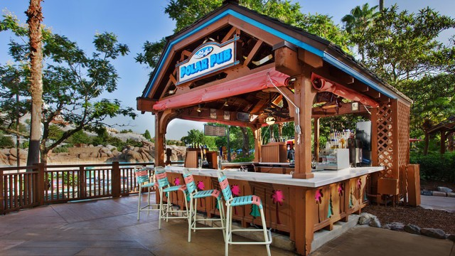 Complete Guide to Blizzard Beach at Disney World - Polar Pub