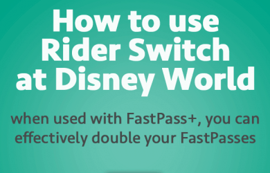 riderswitchheadersquare 4 390x250 - How to use Rider Switch at Disney World