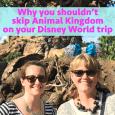 shouldnotskipanimalkingdomlarge 115x115 - Why you shouldn't skip Animal Kingdom - PREP117