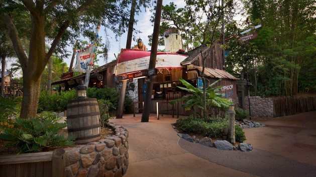 Typhoon Lagoon - Snack Shack (dinner)