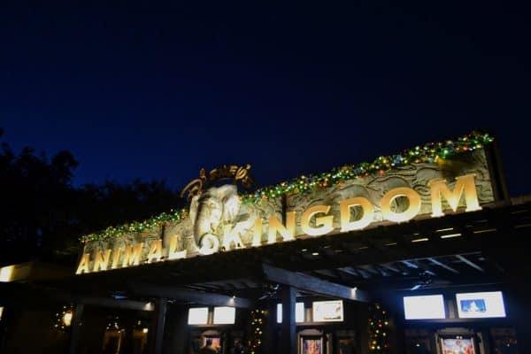 Animal Kingdom front at christmas